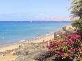 Puerto del Carmen Playa Grande