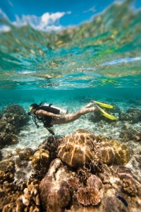 Open Water Diver Lanzarote