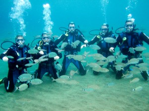 try dive lanzarote