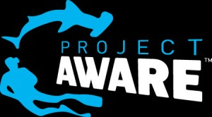 project-aware